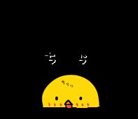 [LINEスタンプ] ひよこのちっぴの日常会話1.5 発売!